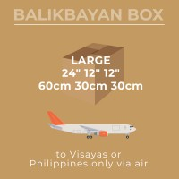 Air Large Visayas Mindanao